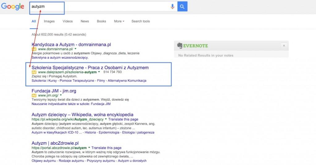 dalej razem google ad grants