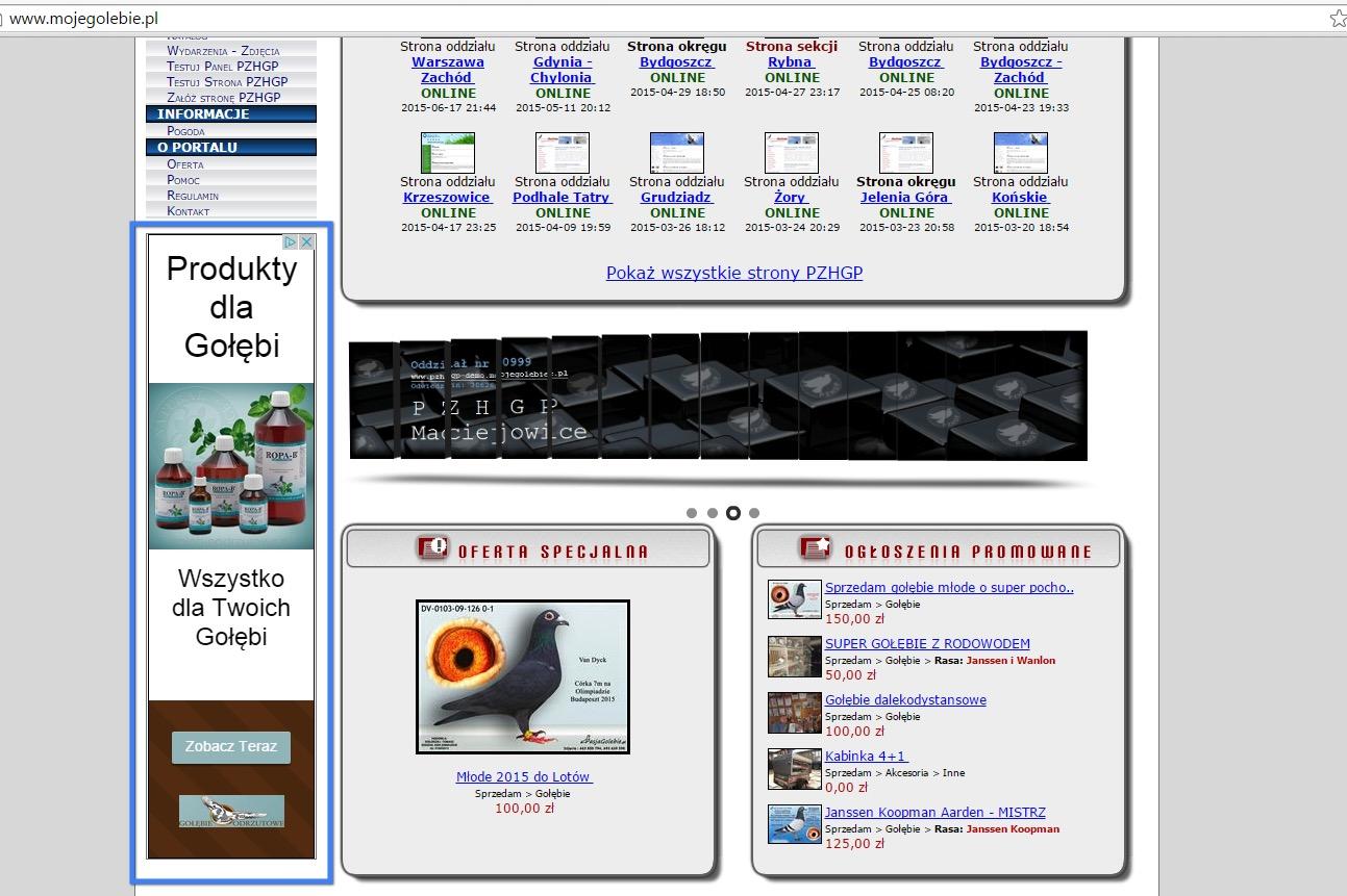 Sieć reklamowa Google AdWords